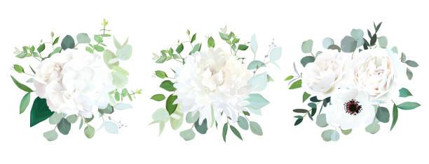 stockillustraties, clipart, cartoons en iconen met witte huwelijksbloemen vector design boeketten - dahlia