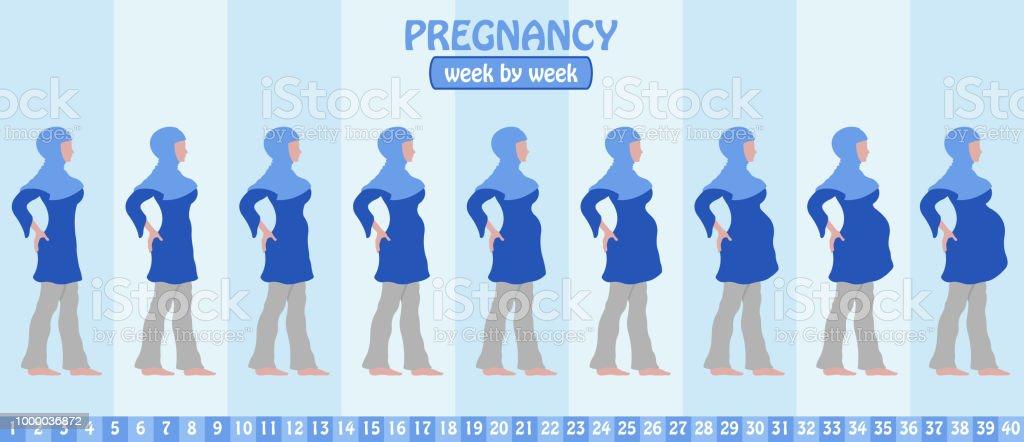 Woche Woche Schwangerschaft Schrittweise Von Schwangeren Muslimin ...