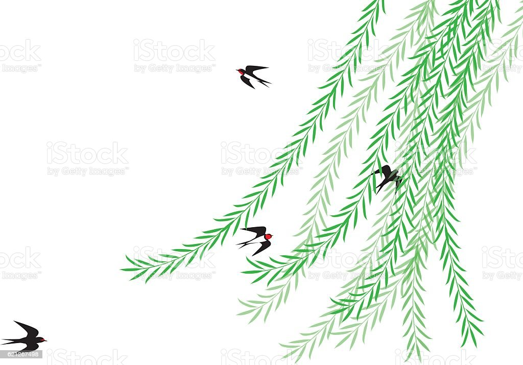 Weeping willow and swallow. Early summer landscape of Japan. vector art illustration