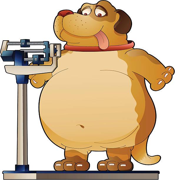 Resultado de imagem para fat dog caricature