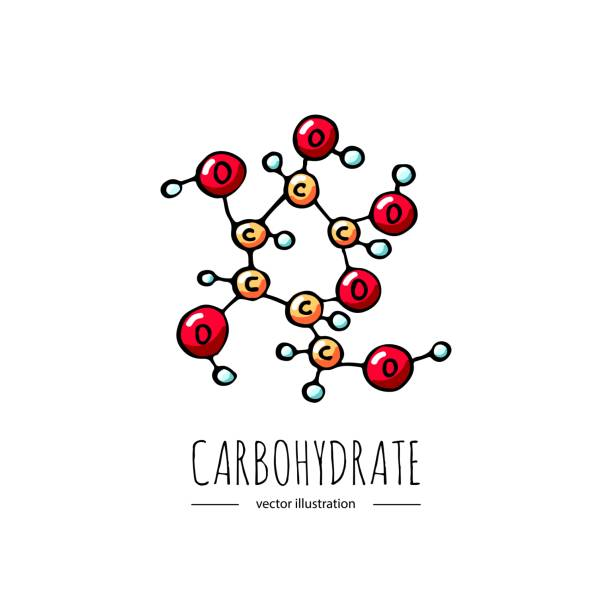 Weight loss Hand drawn doodle Carbohydrate chemical formula icon Vector illustration Carbs dieting symbol Cartoon sketch weight loss element Fitness diet Sport nutrition Healthy eating On white background glycemic index stock illustrations