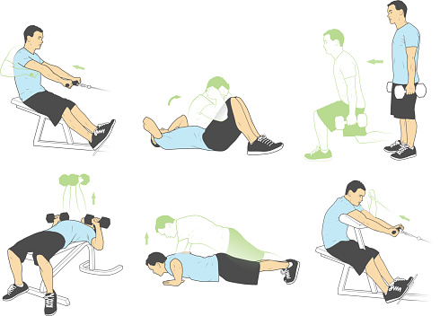 Weightlifting and exercises (Vector)