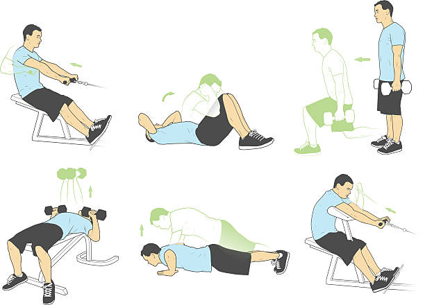 Weightlifting and exercises (Vector)  exercise machine stock illustrations