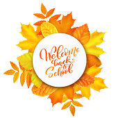 Welcome back to school hand-drawn lettering background decorated with realistic autumn leaves. Vector illustration