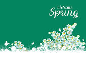 Welcome spring greeting card lilies of valley flowers. Vector illustration template