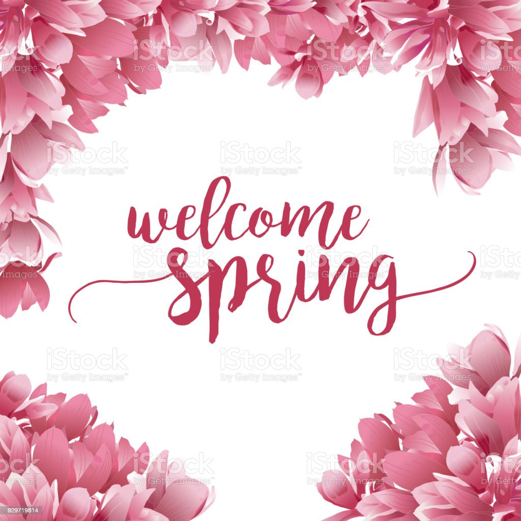 Welcome Spring Text With Magnolia Flower Border Stock Vector Art