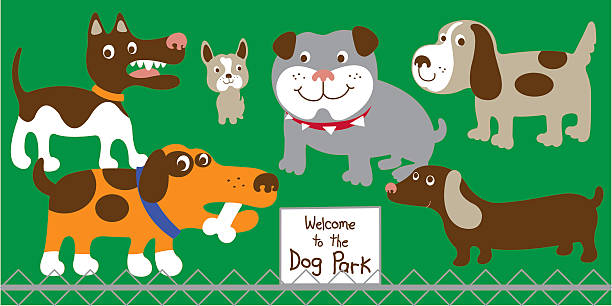 Image result for welcome to the dog park cartoon