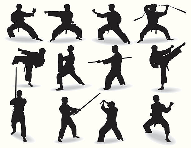 well-known martial arts - martial arts stock illustrations