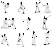 Well-known martial arts