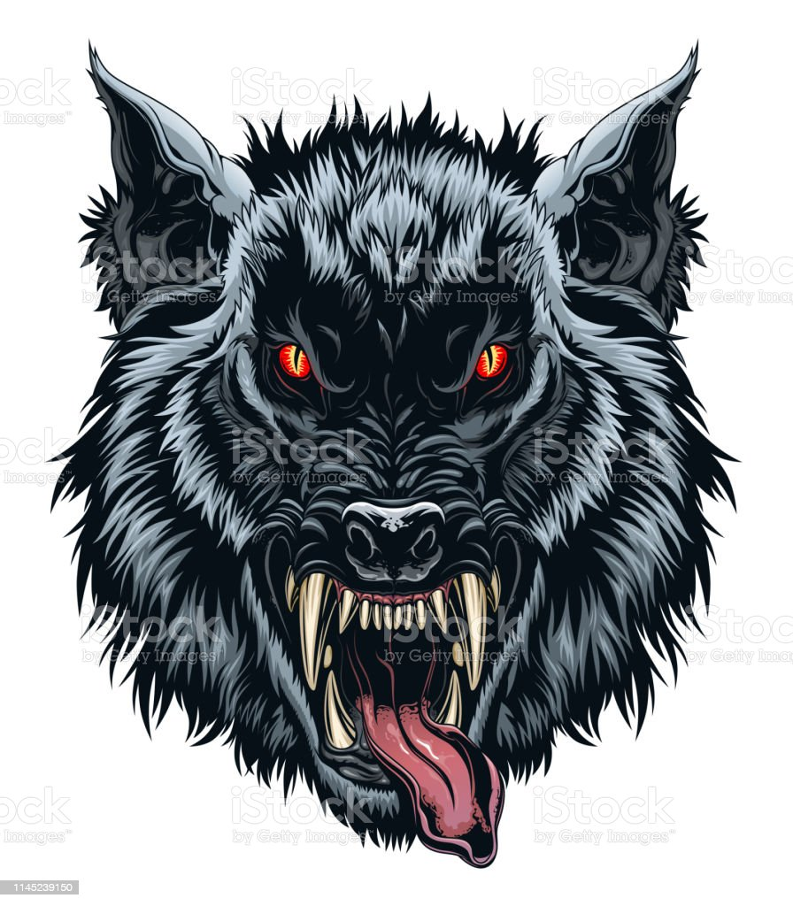 Werewolf Head Illustration Stock Vector Art More Images Of