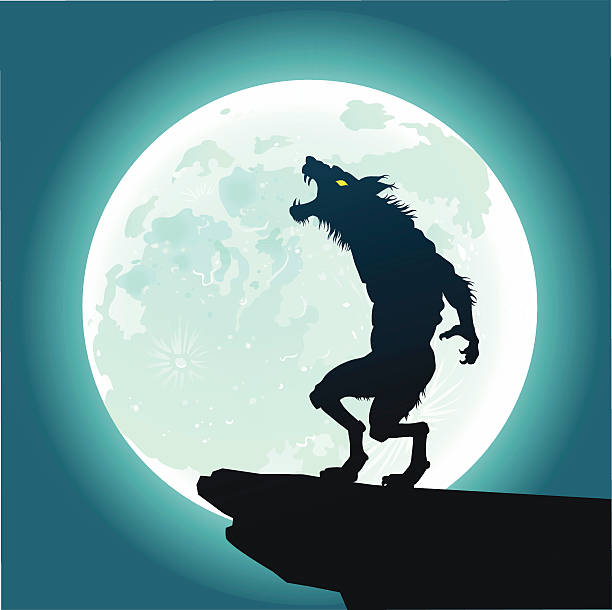 Werewolf Howling at the Moon All images are placed on separate layers. They can be removed or altered if you need to. Some gradients were used. No transparencies.  werewolf stock illustrations