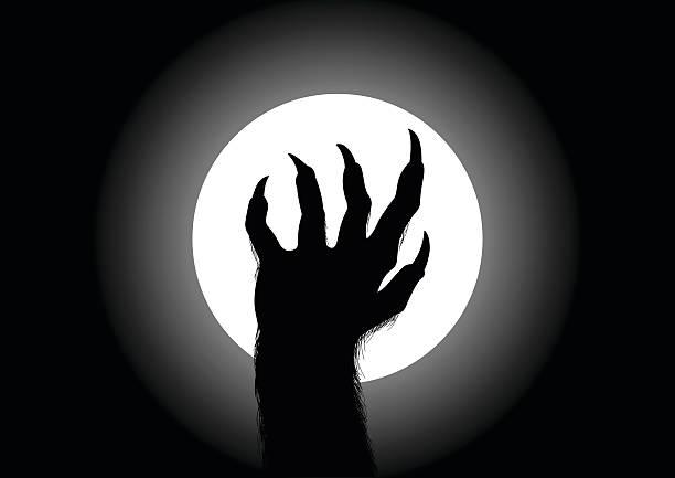 Werewolf Silhouette illustration of werewolf hand against the full moon werewolf stock illustrations