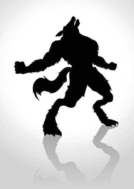 Werewolf Silhouette illustration of a howling werewolf werewolf stock illustrations
