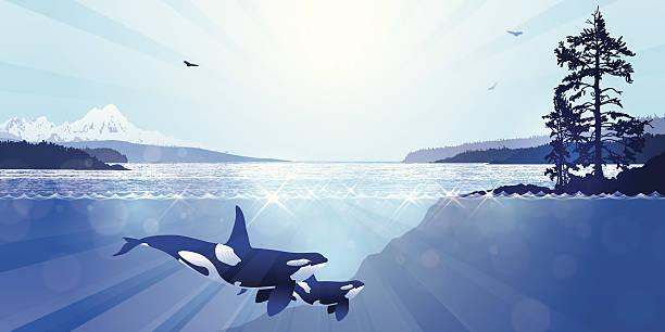 West Coast Landscape vector art illustration