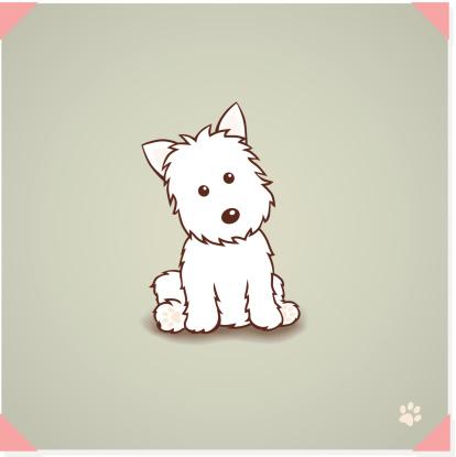 West highland terrier Dog