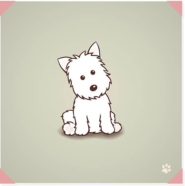 west highland terrier hunde - schoßhunde stock-grafiken, -clipart, -cartoons und -symbole