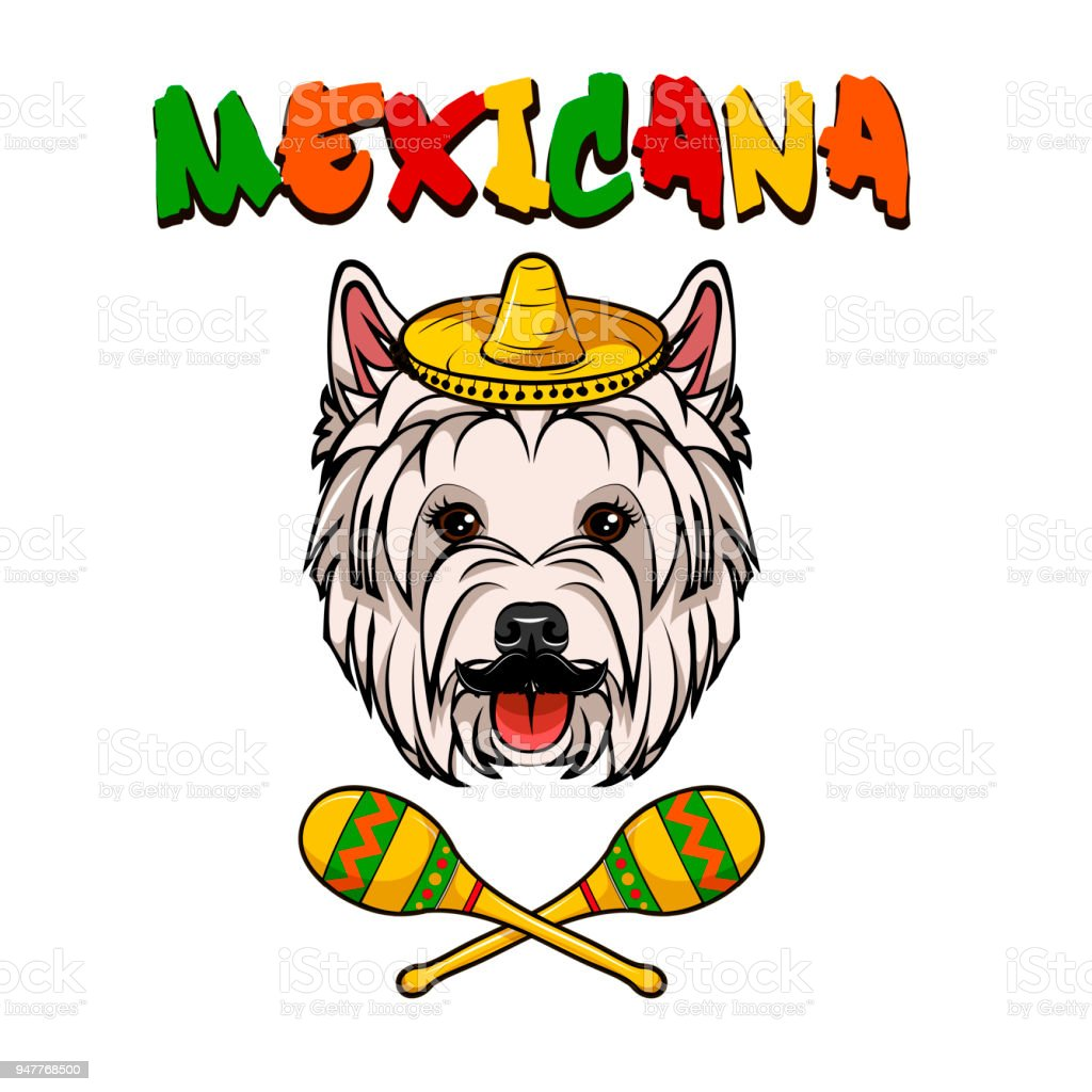 royalty free cute westie cartoons clip art vector images rh istockphoto com westie clipart free clipart westie dogs