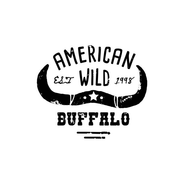 Western Logo Skull Buffalo head Draw Grunge style. Wild West symbol sing of a cow's Horns and Retro Typography. Western Logo Skull Buffalo hand Draw Grunge style. Wild West symbol sing of a cow's Horns and Retro Typography. Vintage Emblem for T-shirt Print. Vector Silhouette Illustration Cow female animal stock illustrations