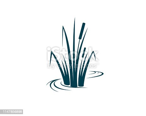 Cattail plant abstract vector illustration
