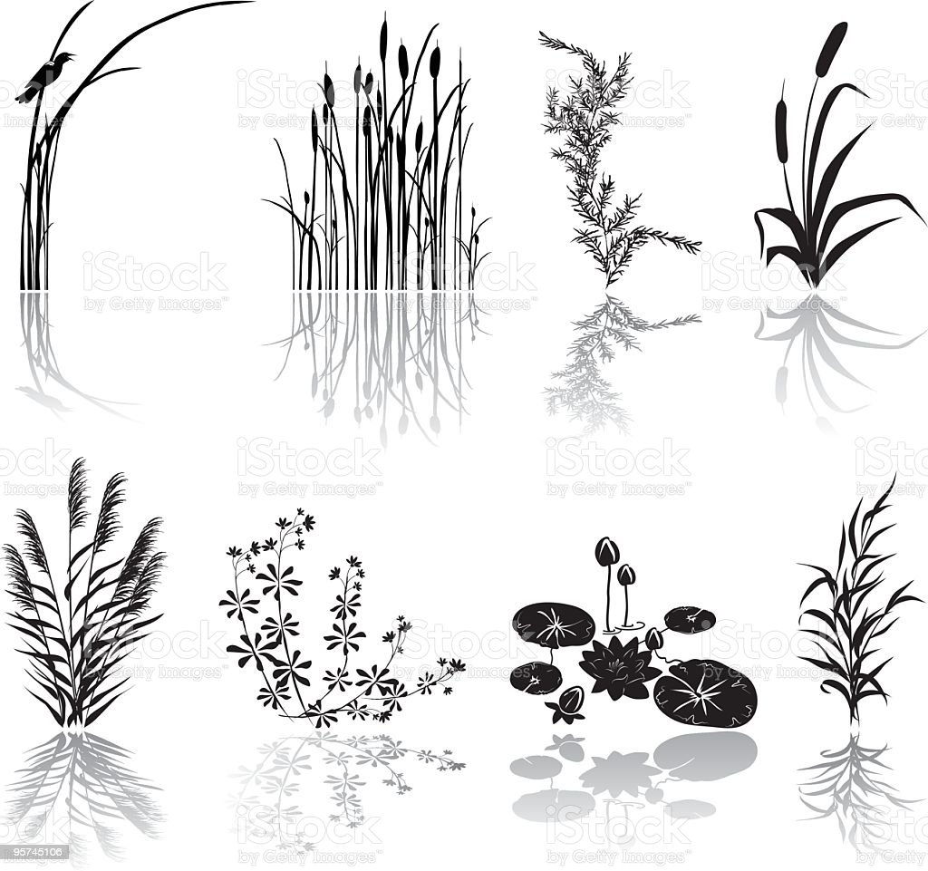 Wetlands Black Silhouette Icons with Multiple Marsh Elements and Shadows vector art illustration