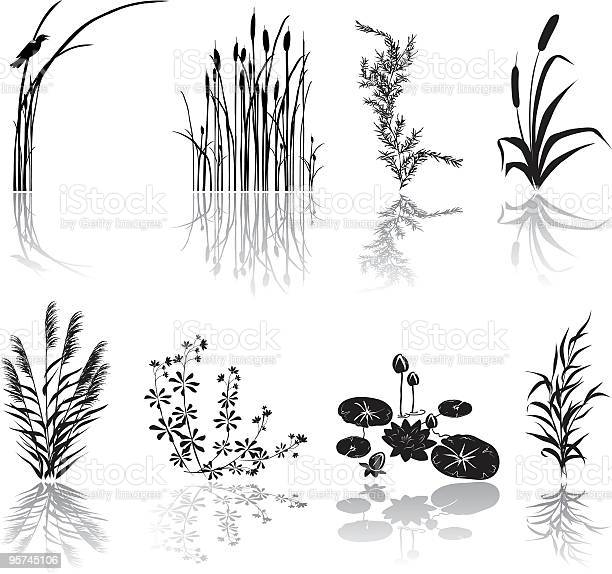 Wetlands Icons. Wetlands Black Silhouette Icons with Marsh Elements including shadows. Set of eight Marsh elements include thrush weeds, cat tails, lily pads, bird, plants,  and various weeds. Elements can be moved and manipulated.