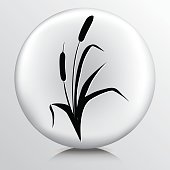istock Wetlands Icon With Cattails 538121611