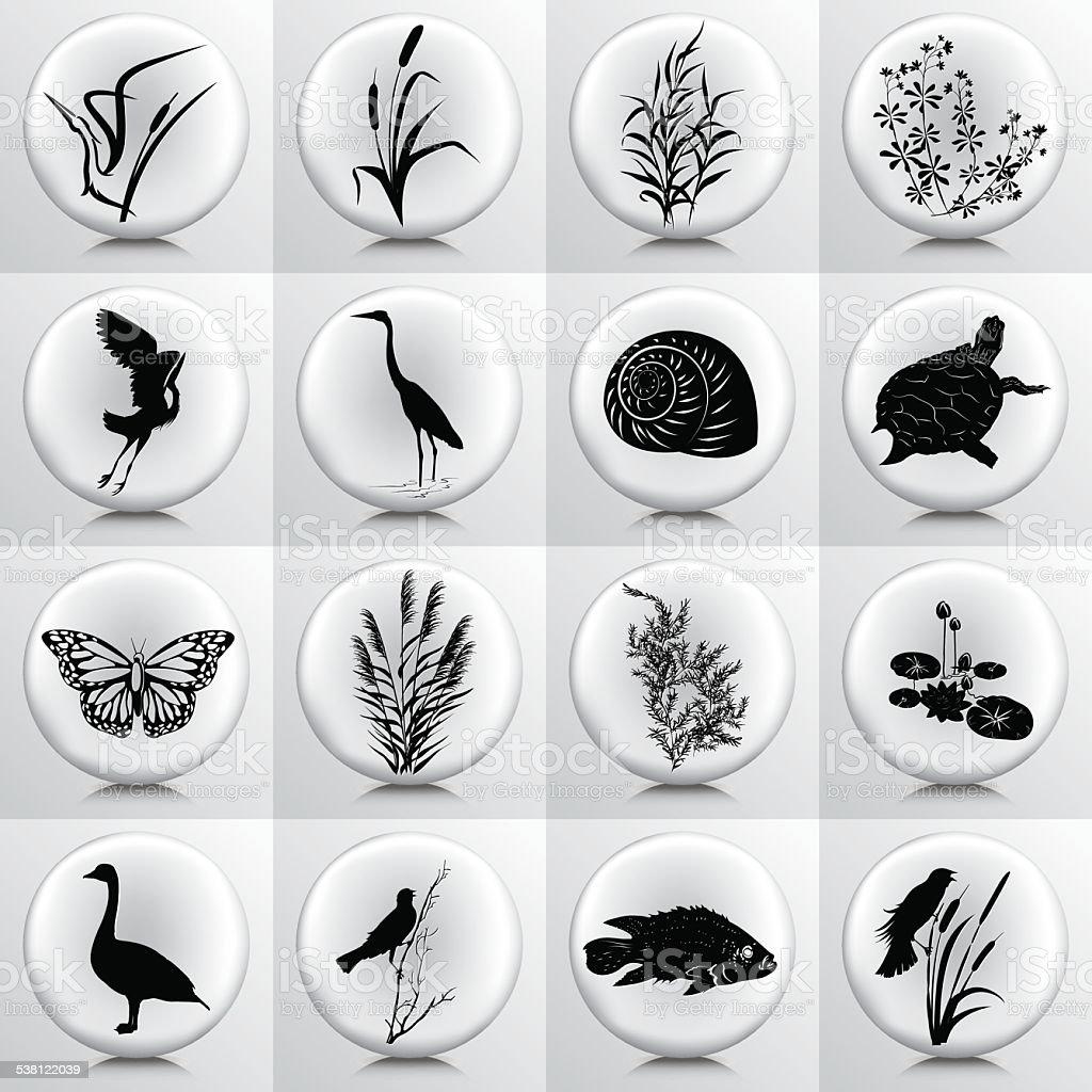 Marécages icônes de Marsh plantes, d'oiseaux, de poissons sur gris bouton - Illustration vectorielle