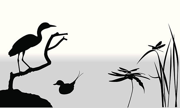 Wetlands Vector Silhouette A-Digit heron stock illustrations