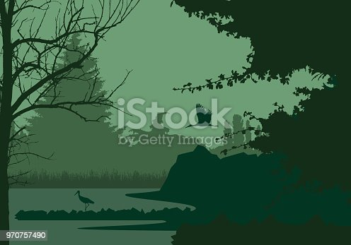Wetlands with forest and flying and standing stork, under the evening sky - vector