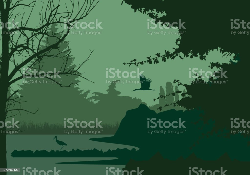 Wetlands with forest and flying and standing stork, under the evening sky - vector - illustrazione arte vettoriale