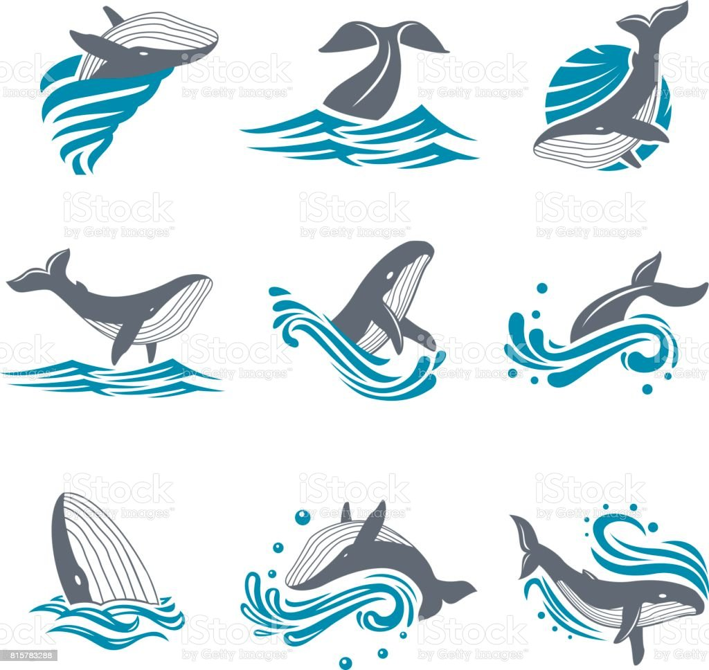 Baleine entre mer les vagues et les éclaboussures, icon set vector - Illustration vectorielle