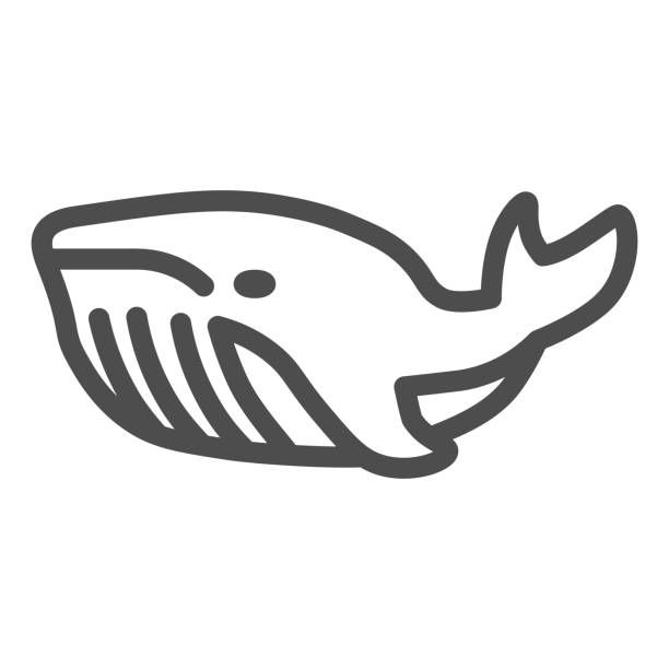 Whale line icon, ocean concept, very large marine mammal sign on white background, orca whale icon in outline style for mobile concept and web design. Vector graphics. Whale line icon, ocean concept, very large marine mammal sign on white background, orca whale icon in outline style for mobile concept and web design. Vector graphics giant fictional character stock illustrations