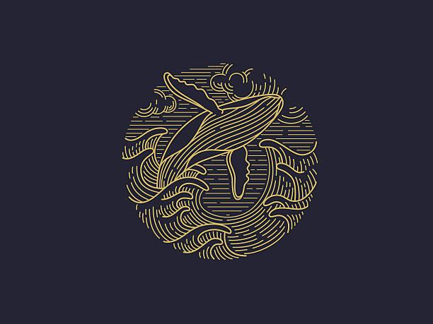 illustrazioni stock, clip art, cartoni animati e icone di tendenza di whale logo - nuoto mare