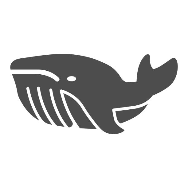 Whale solid icon, ocean concept, very large marine mammal sign on white background, orca whale icon in glyph style for mobile concept and web design. Vector graphics. Whale solid icon, ocean concept, very large marine mammal sign on white background, orca whale icon in glyph style for mobile concept and web design. Vector graphics giant fictional character stock illustrations