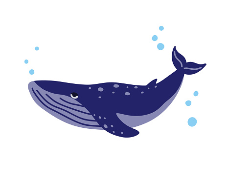 Whale. Stylized dark blue character with air bubbles. Cartoon hand drawn illustration