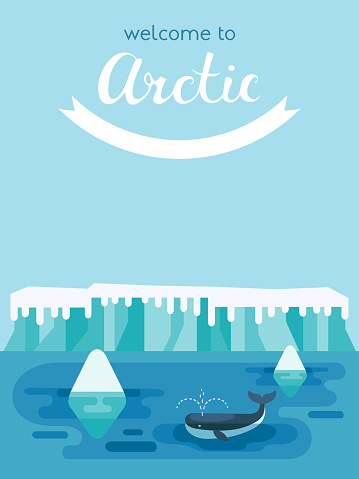 Whale swimming between icebergs for poster template in flat design style.