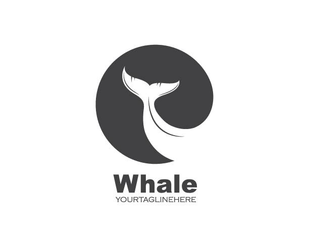 whale tail icon vector illustration design whale tail icon vector illustration design template beluga whale stock illustrations