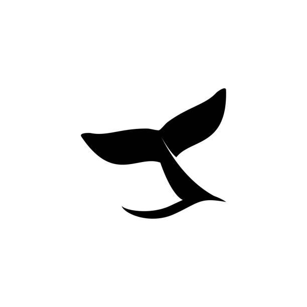 walschwanz-symbol-vektor-illustration - wal stock-grafiken, -clipart, -cartoons und -symbole