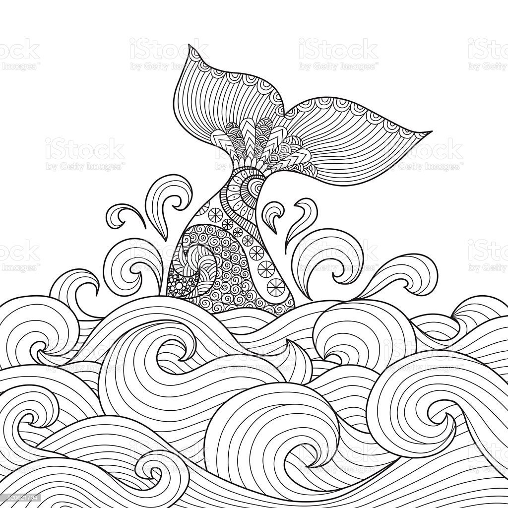 Nageoire de baleine - Illustration vectorielle