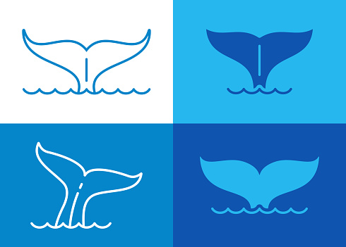 Whale marine mammal tails in the ocean line drawing blue illustrations symbols.
