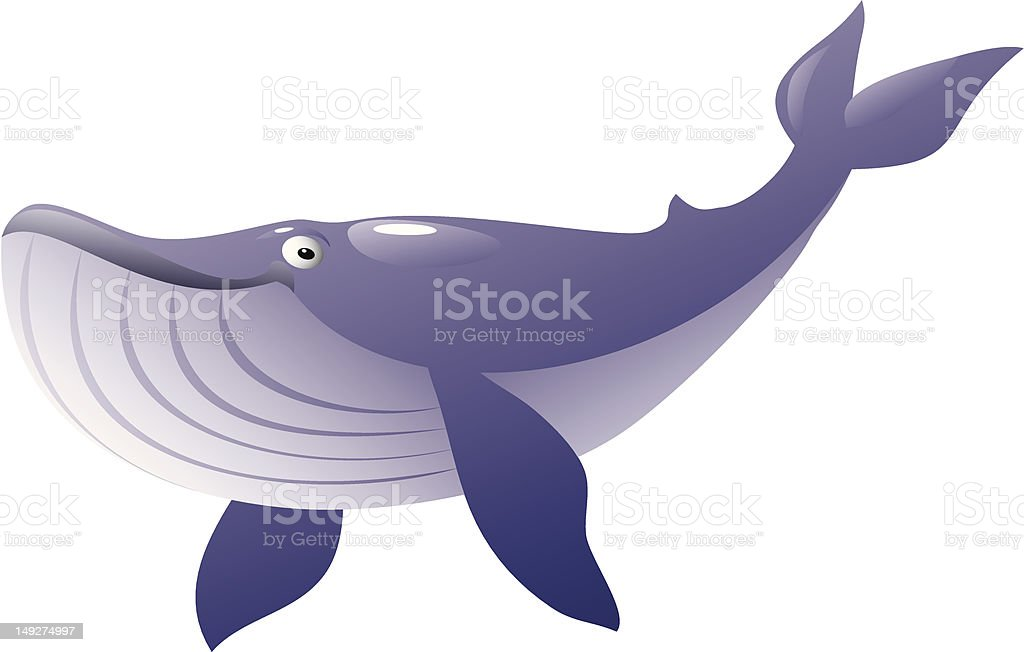 royalty free humpback whale migration clip art vector images rh istockphoto com Octopus Clip Art humpback whale clipart black and white