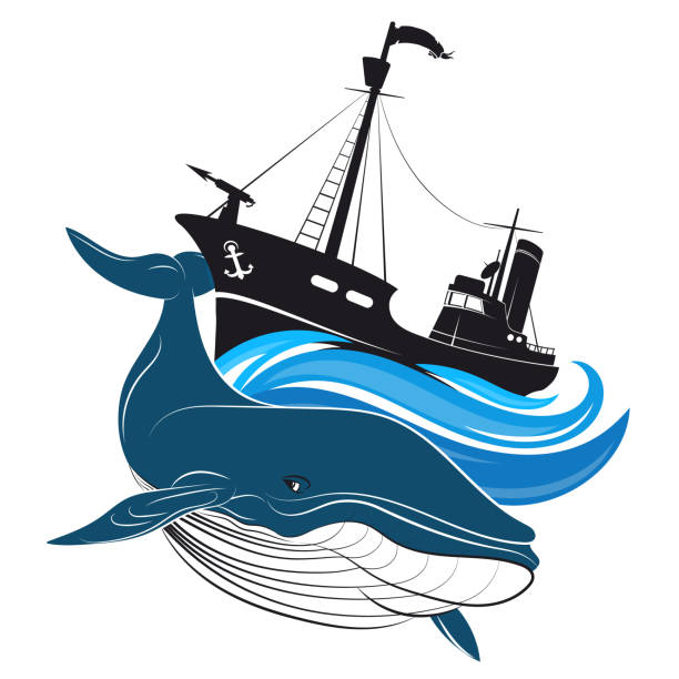 Image result for whalers clipart