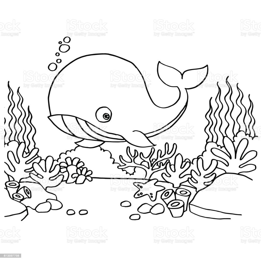 Whales Coloring Pages Vector Stock Vector Art More Images Of