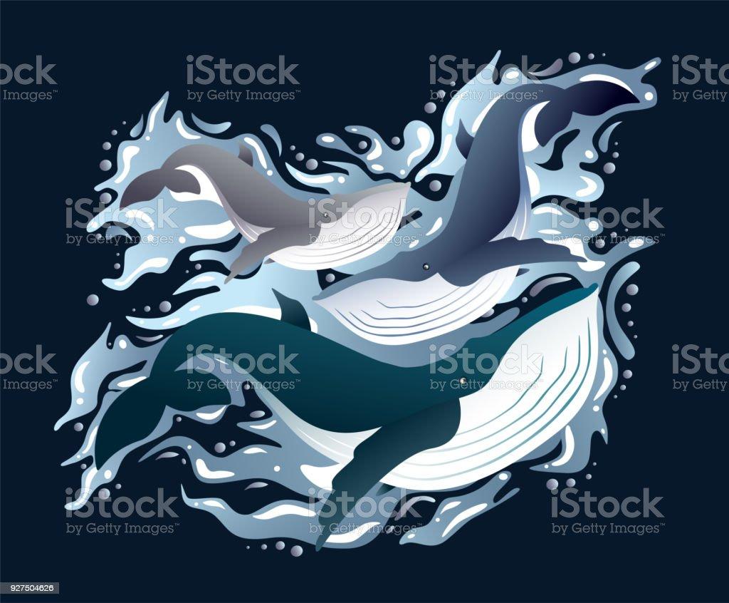 Familie schlanke Abbildung Satz Wale – Vektorgrafik