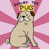 What the pug , cute fat pug cartoon vector illustration