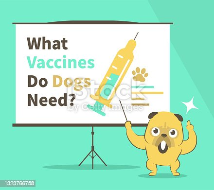 istock What vaccines do dogs need? Cute bulldog gives a presentation about Guide To Canine Vaccines in a conference/meeting setting 1323766758