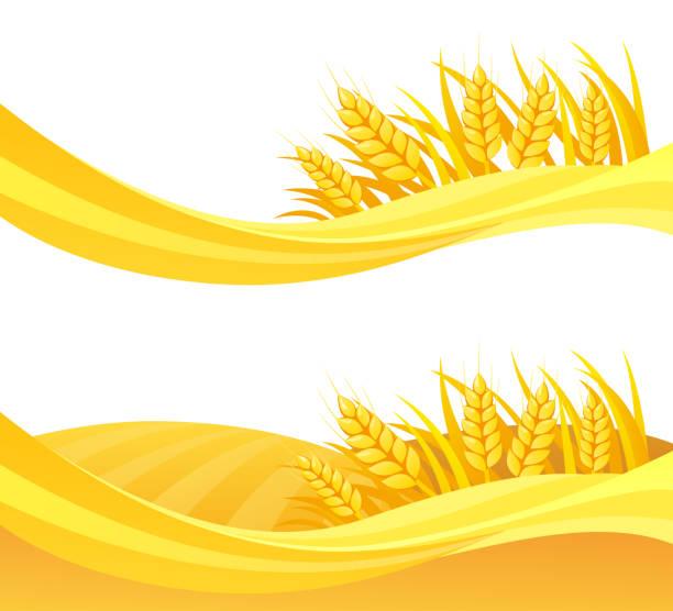 ilustraciones, imágenes clip art, dibujos animados e iconos de stock de diseño de trigo - straw field