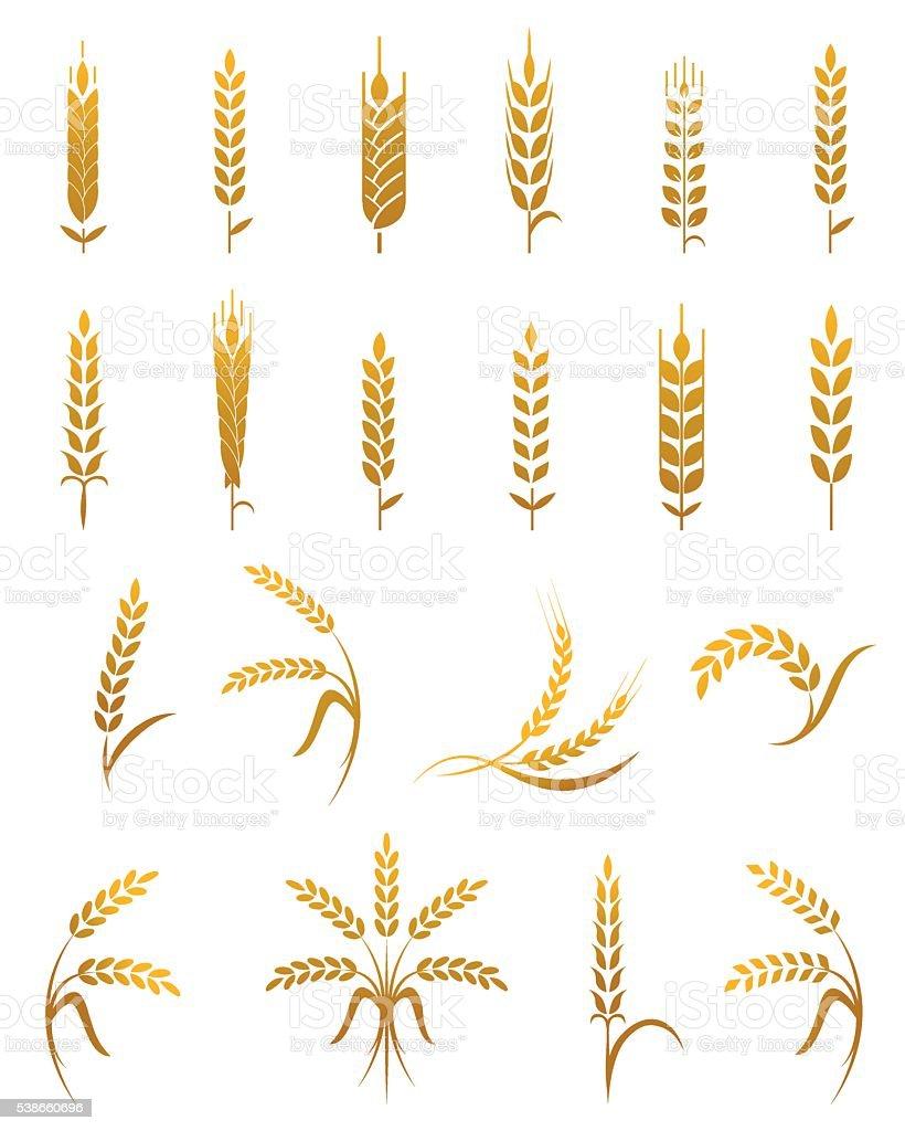 Wheat ear icon set. vector art illustration