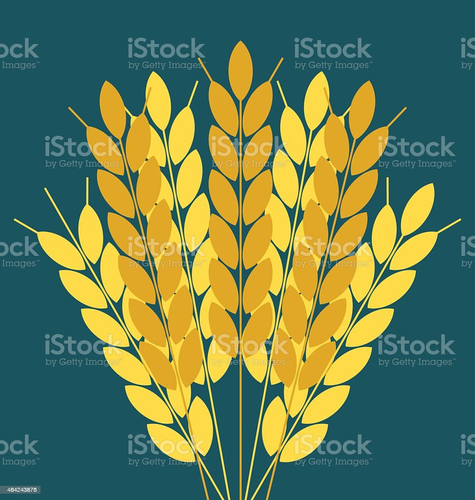 Wheat ears or rice icon. vector art illustration
