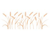 Wheat field background. Cereals icon set with rice, wheat, corn, oats, rye, barley.